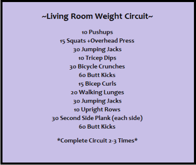 Living Room Weight Circuit